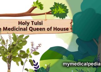 Holy-Tulsi-The-Medicinal-Queen-of-House-